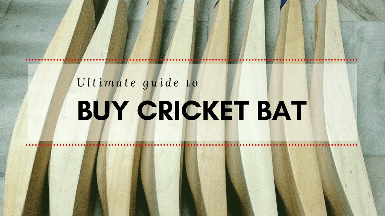 Ultimate guide to buy cricket bat, inside story of the bat