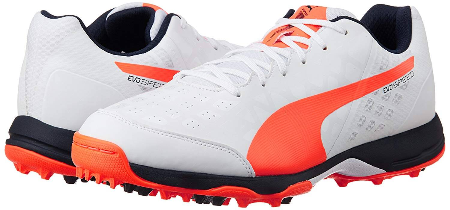 puma evospeed cricket spikes shoes